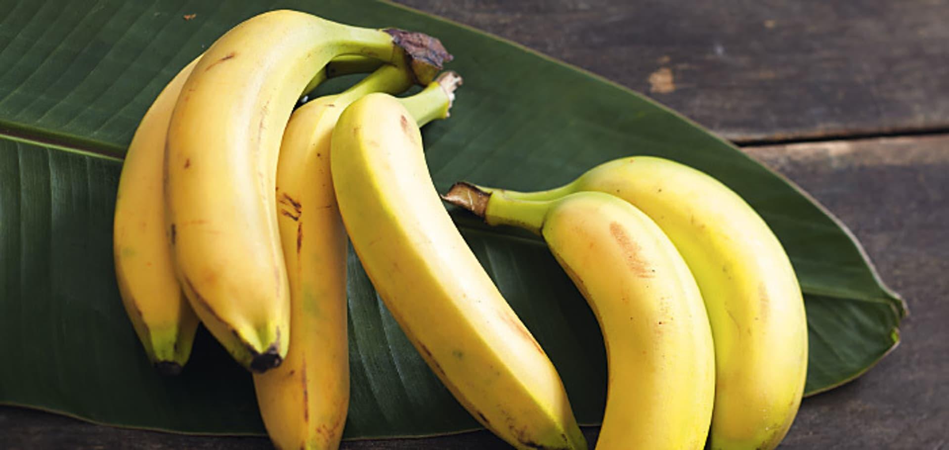 Mit Bananen kochen Tipps, Tricks und Rezepte   Schrot&Korn