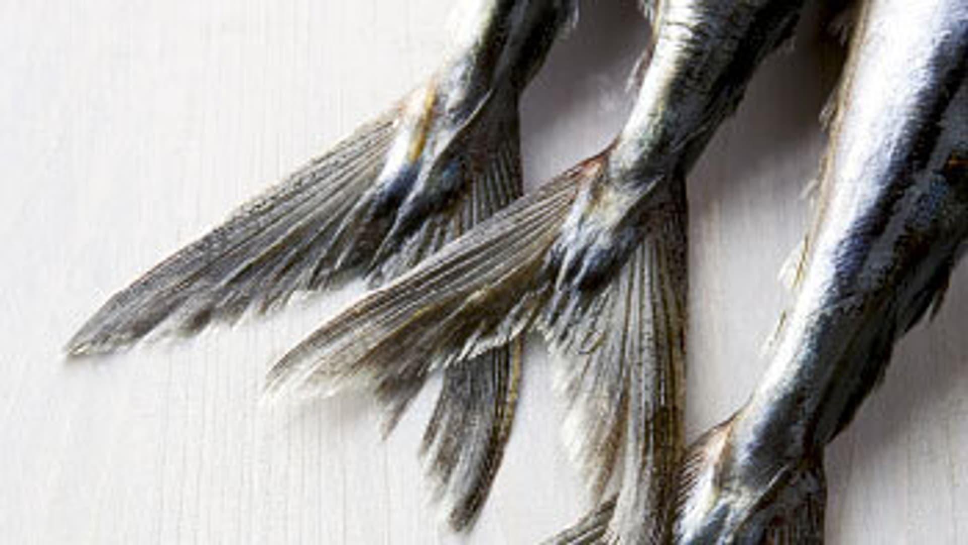Fisch kl