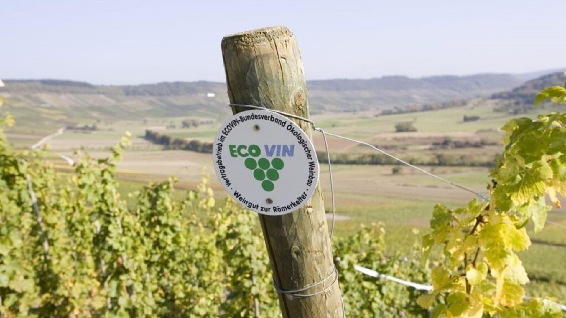 Ecovin Bio Wein