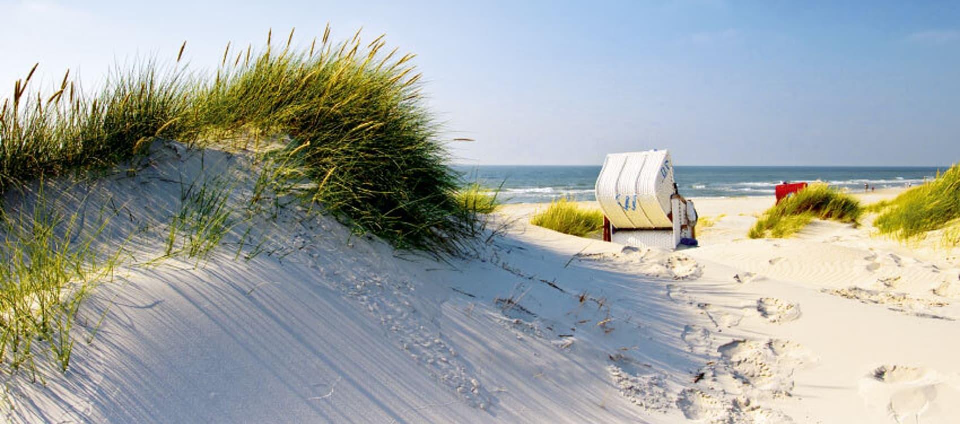 Dünen mit Blick aufs Meer