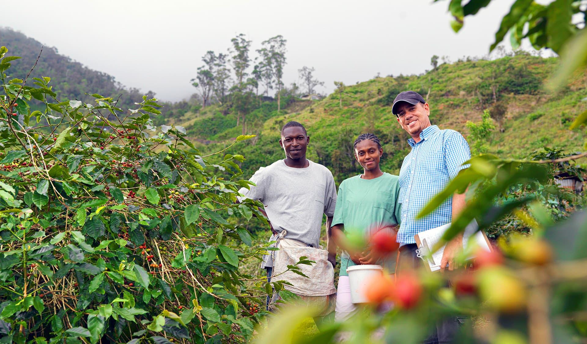 Kleinbauern Kaffeeernte