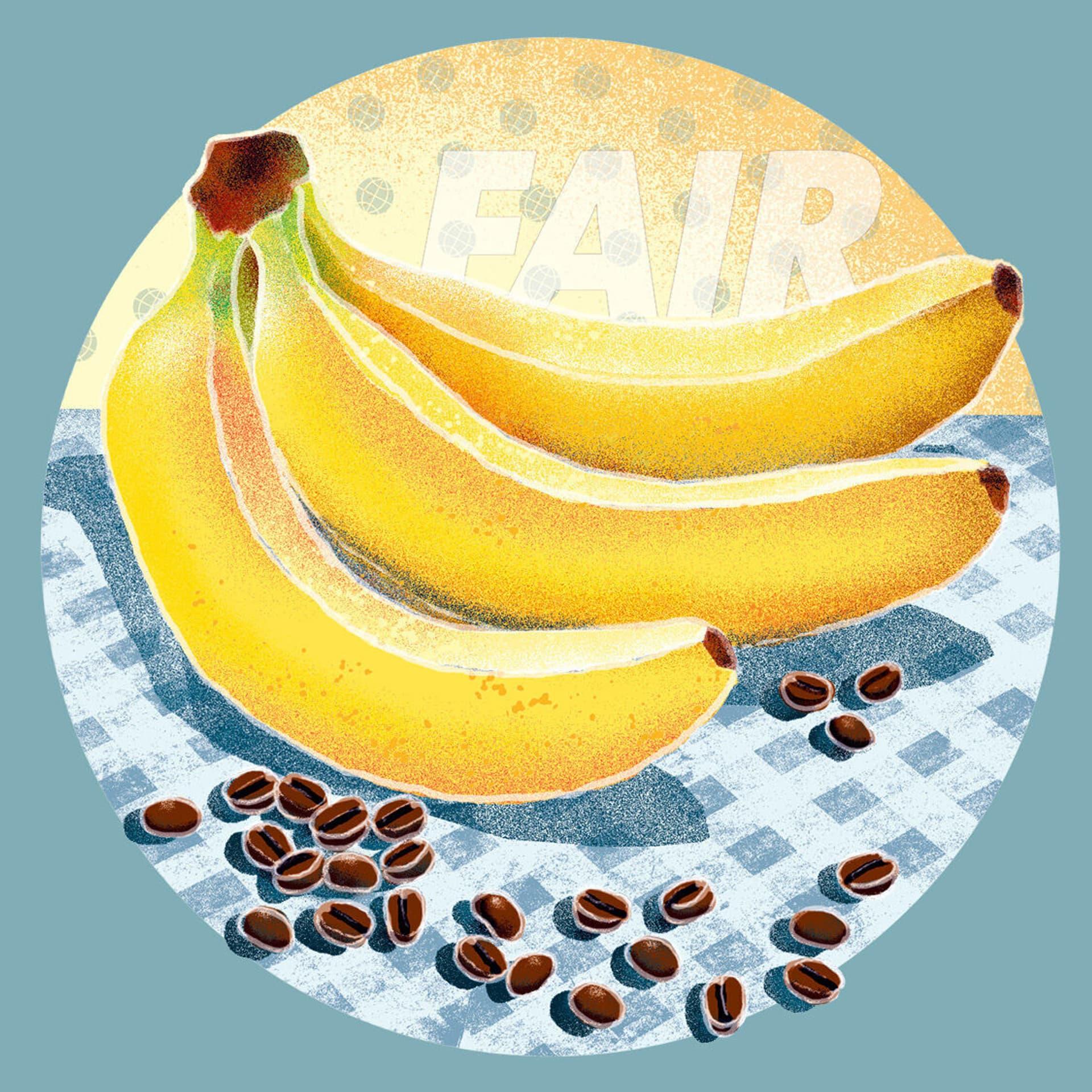 Illustration mit Bananen und Kaffebohnen auf einem Tisch, dahinter der Schriftzug Fair.