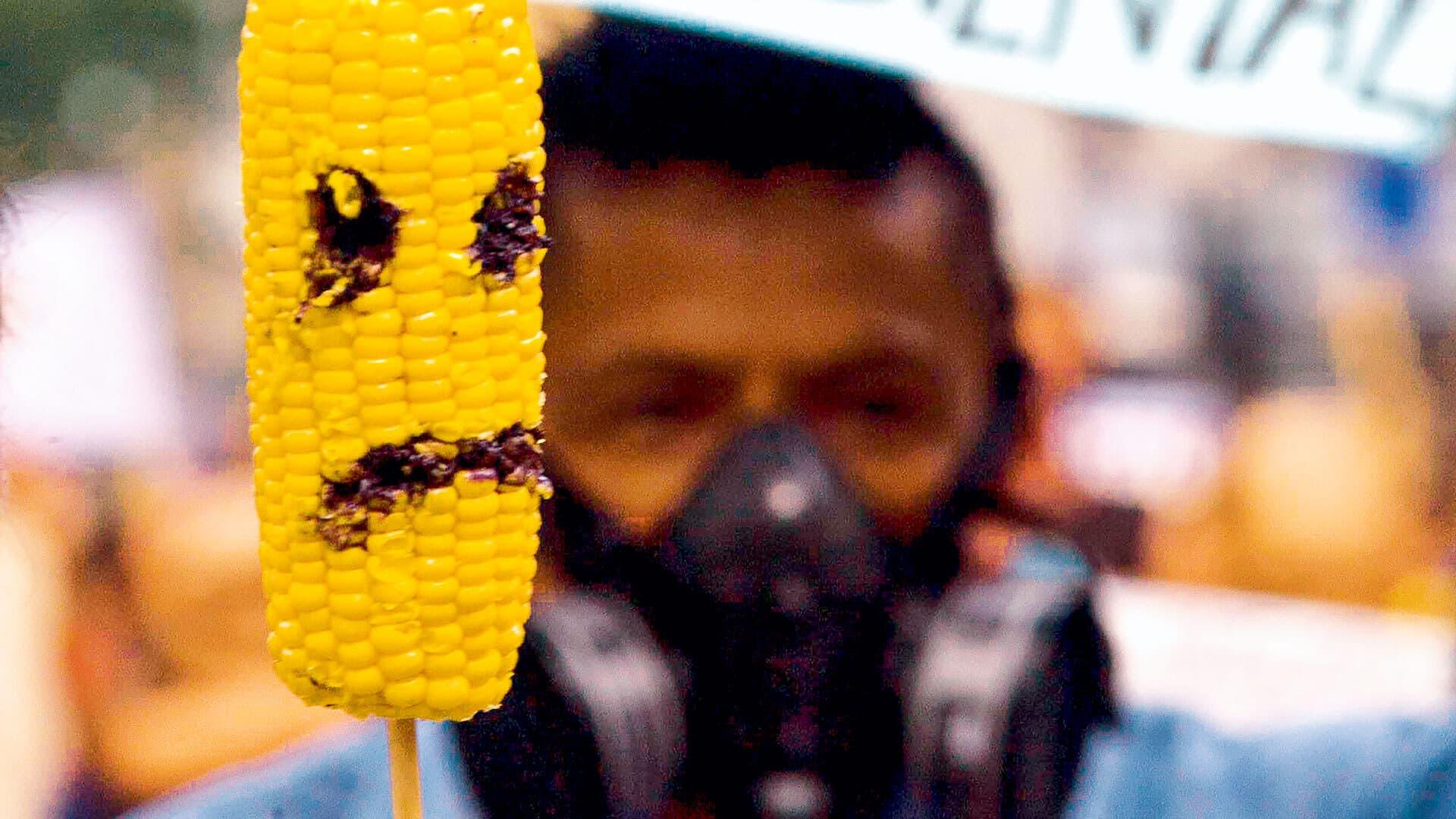 Maiskolben mit wütendem Gesicht bei einer Gentechnik-Demo