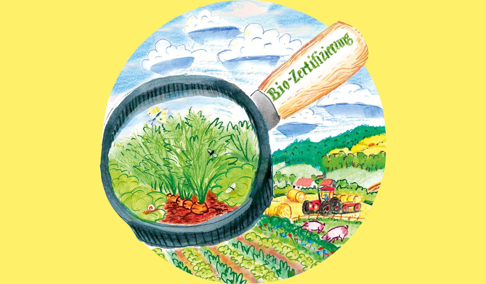 Illustration einer großen Lupe, die die Bedingungen auf dem Acker sichtbar macht.