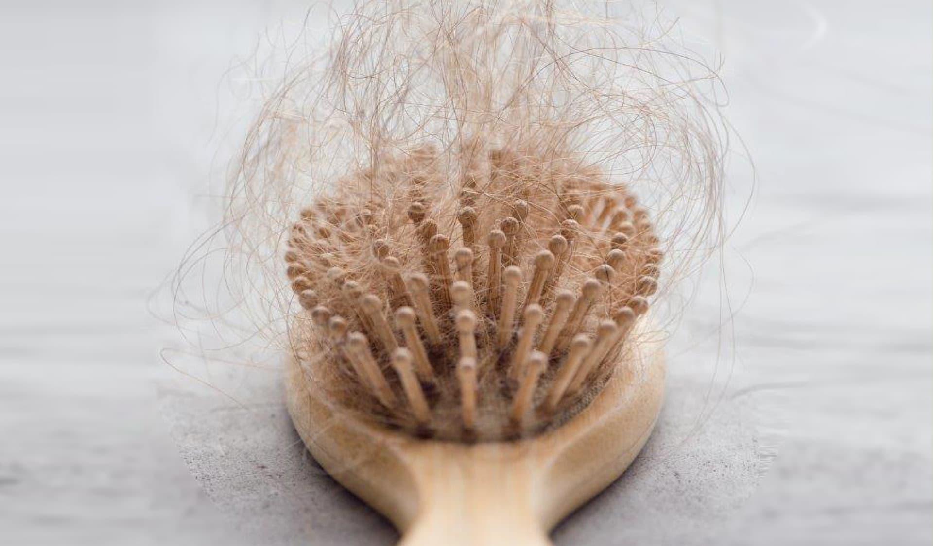 Bürste mit Haaren