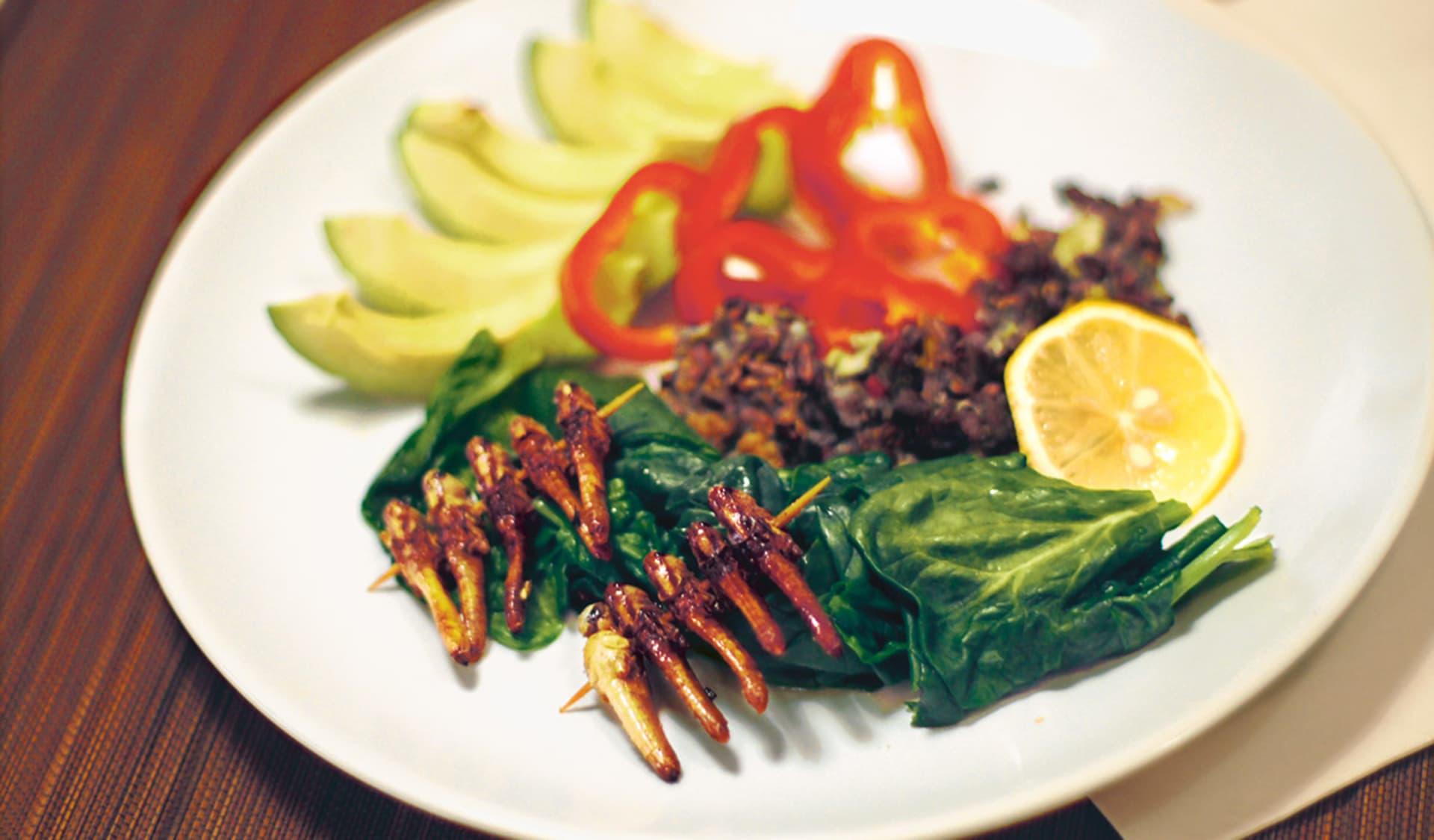 Gebratene Heuschrecken am Spieß drappiert auf einem Teller mit Spinat, Paprika uns Avocado