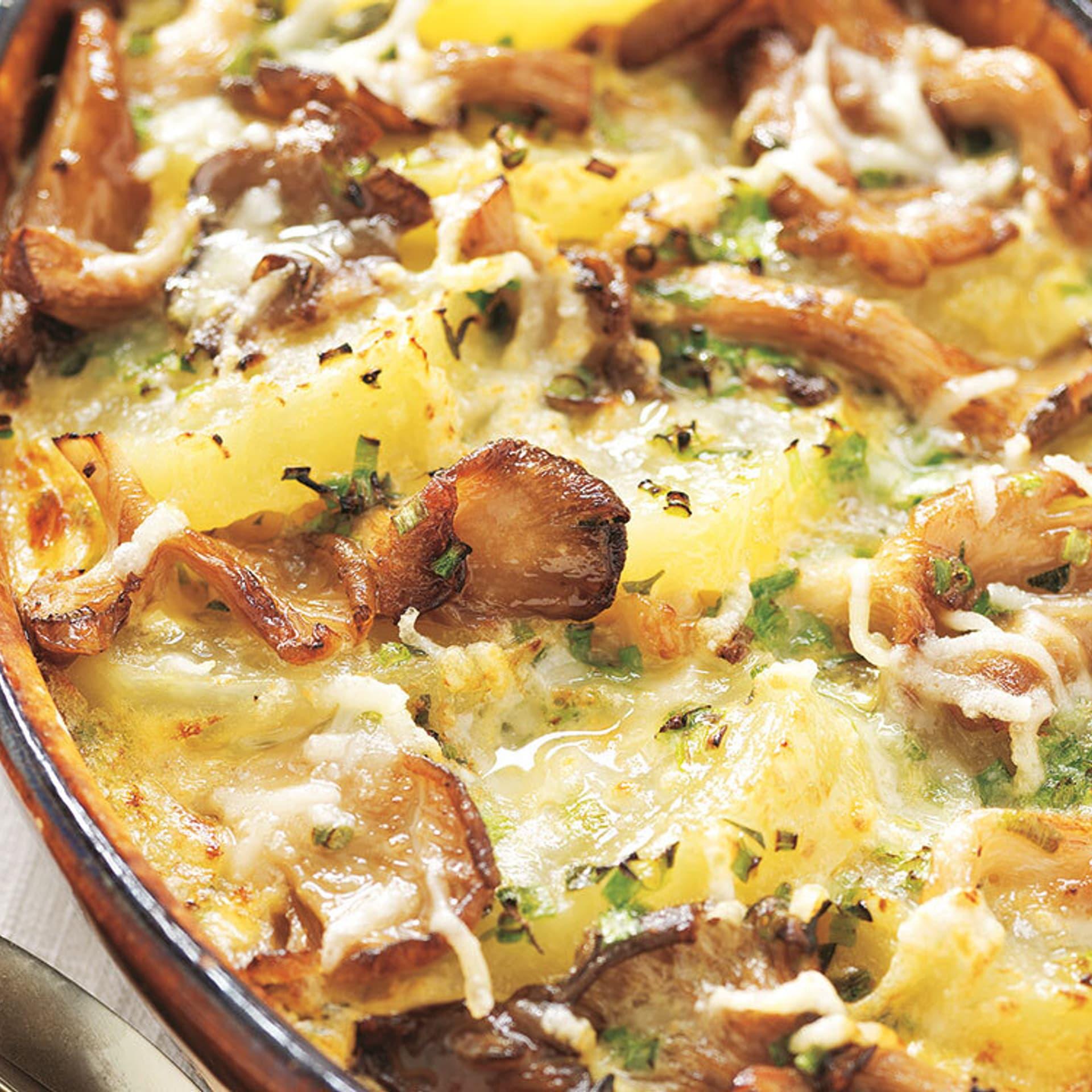 Kartoffel gratin mit austernpilzen