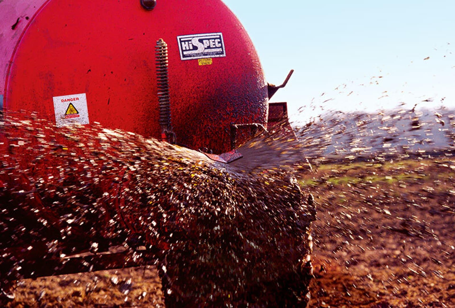 Ein rotes Fahrzeug versprüht Gülle auf ein Feld.