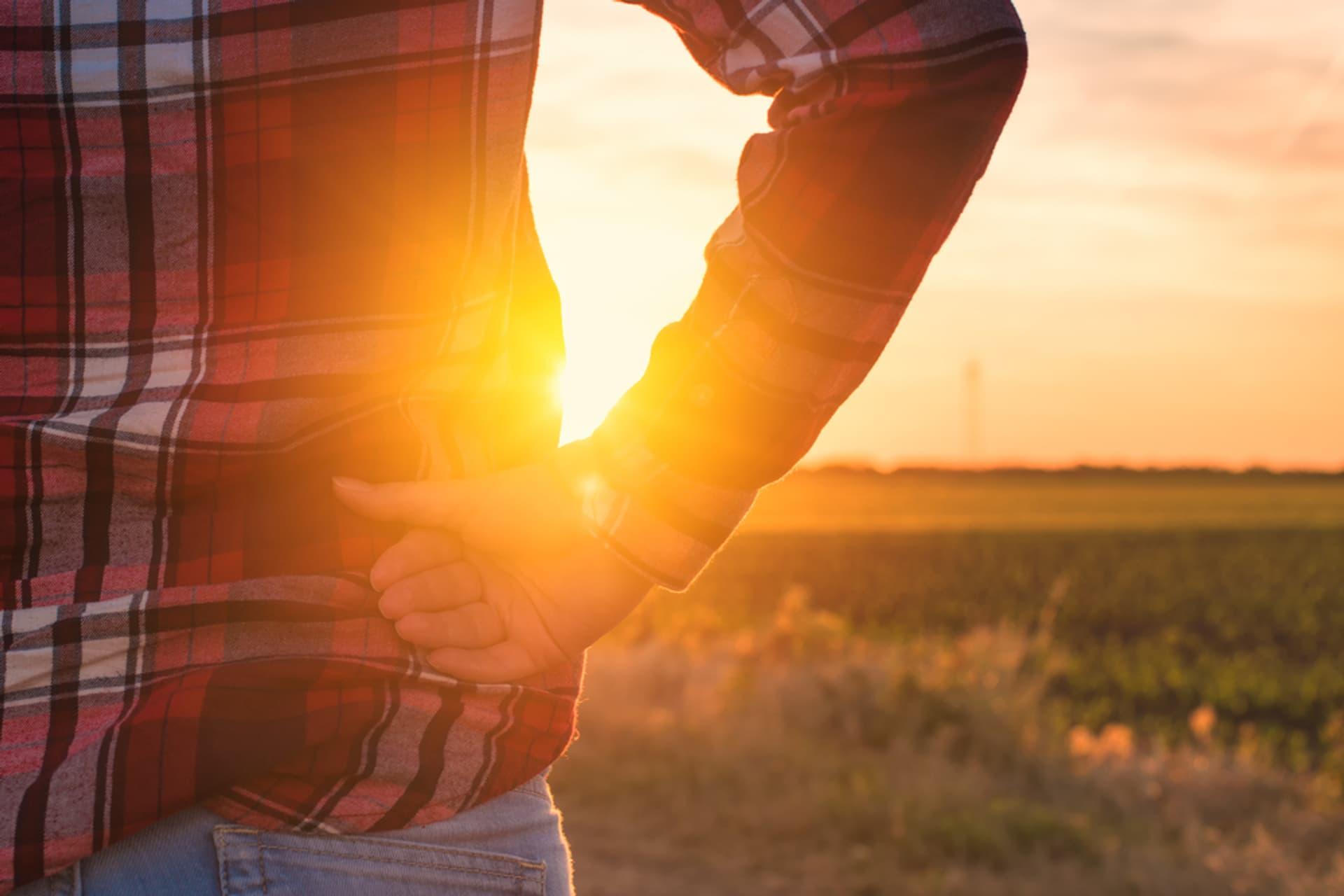Mensch vor Sonnenuntergang über Feld