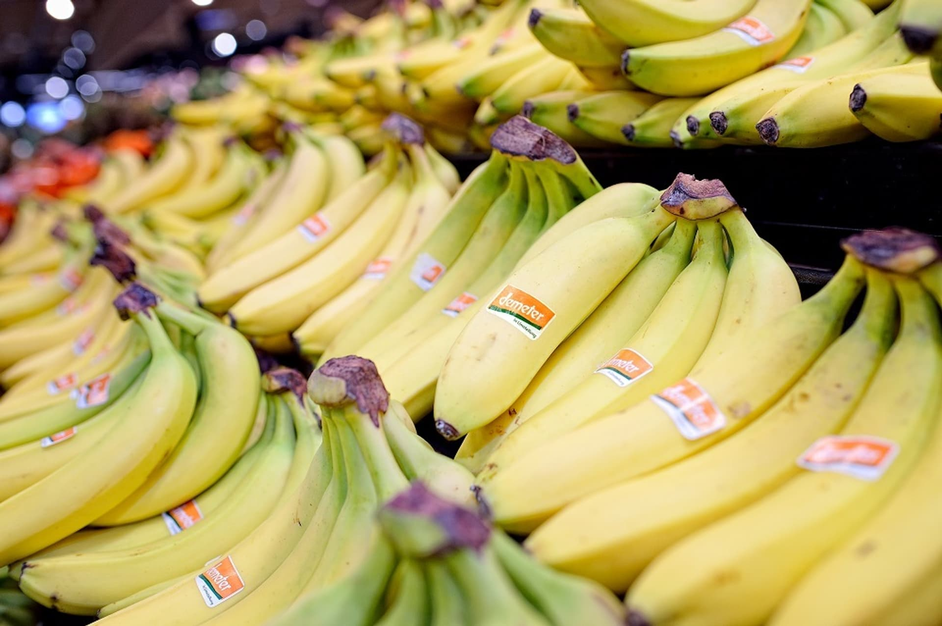 Aufbau Demeter Bananen c real