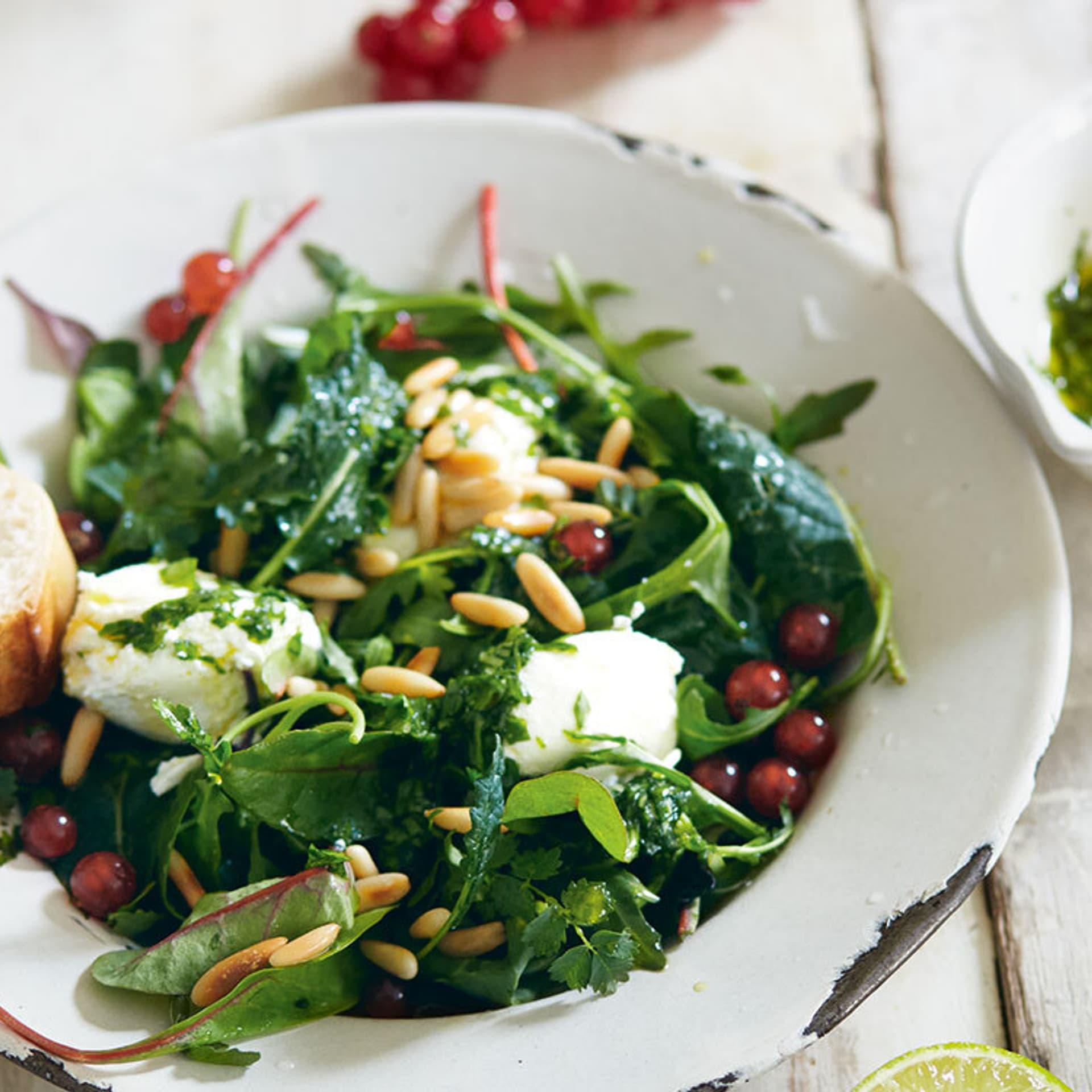 Sommerliche Blattsalate mit Ricotta