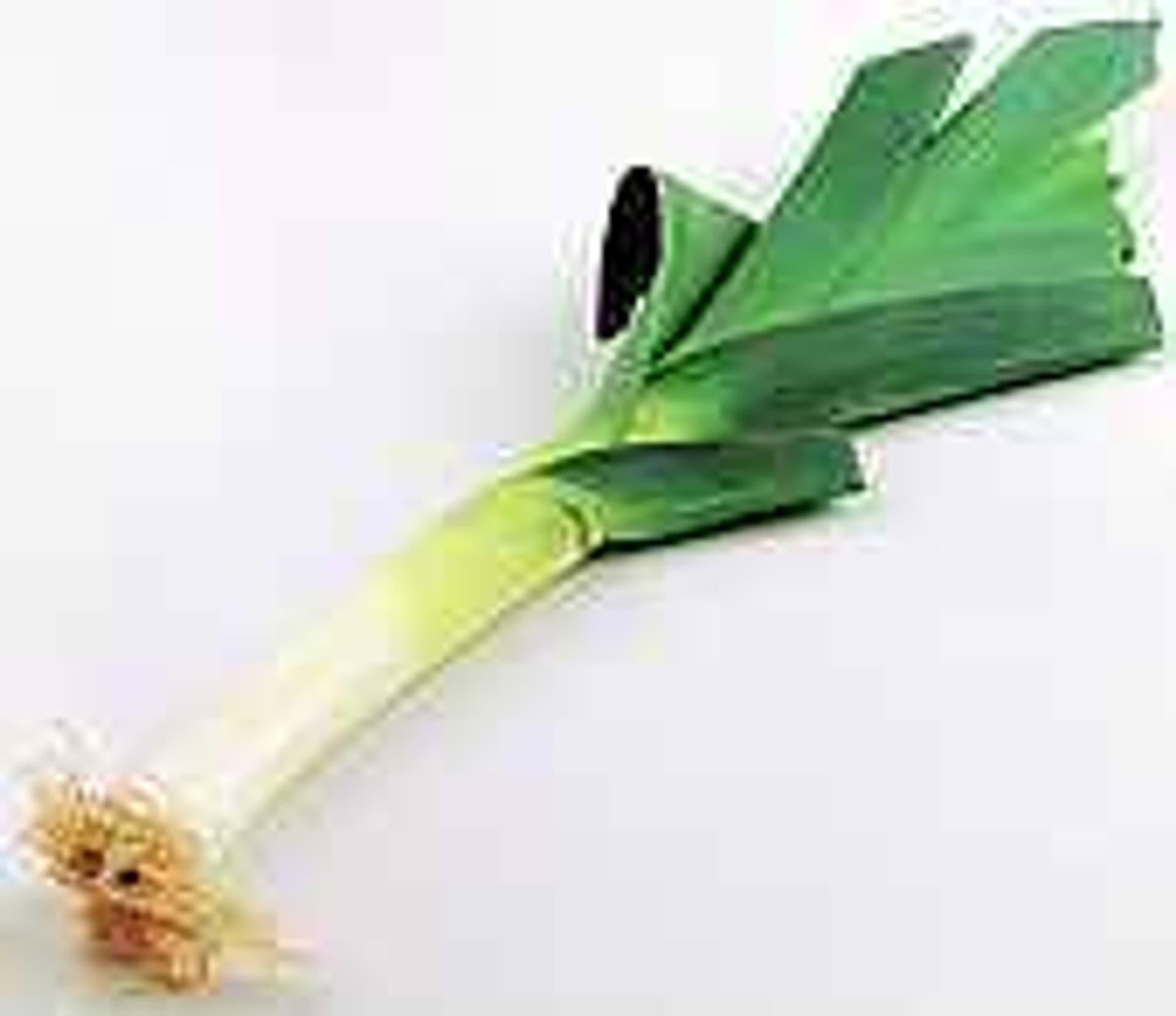 Vegetarisch poreebunt