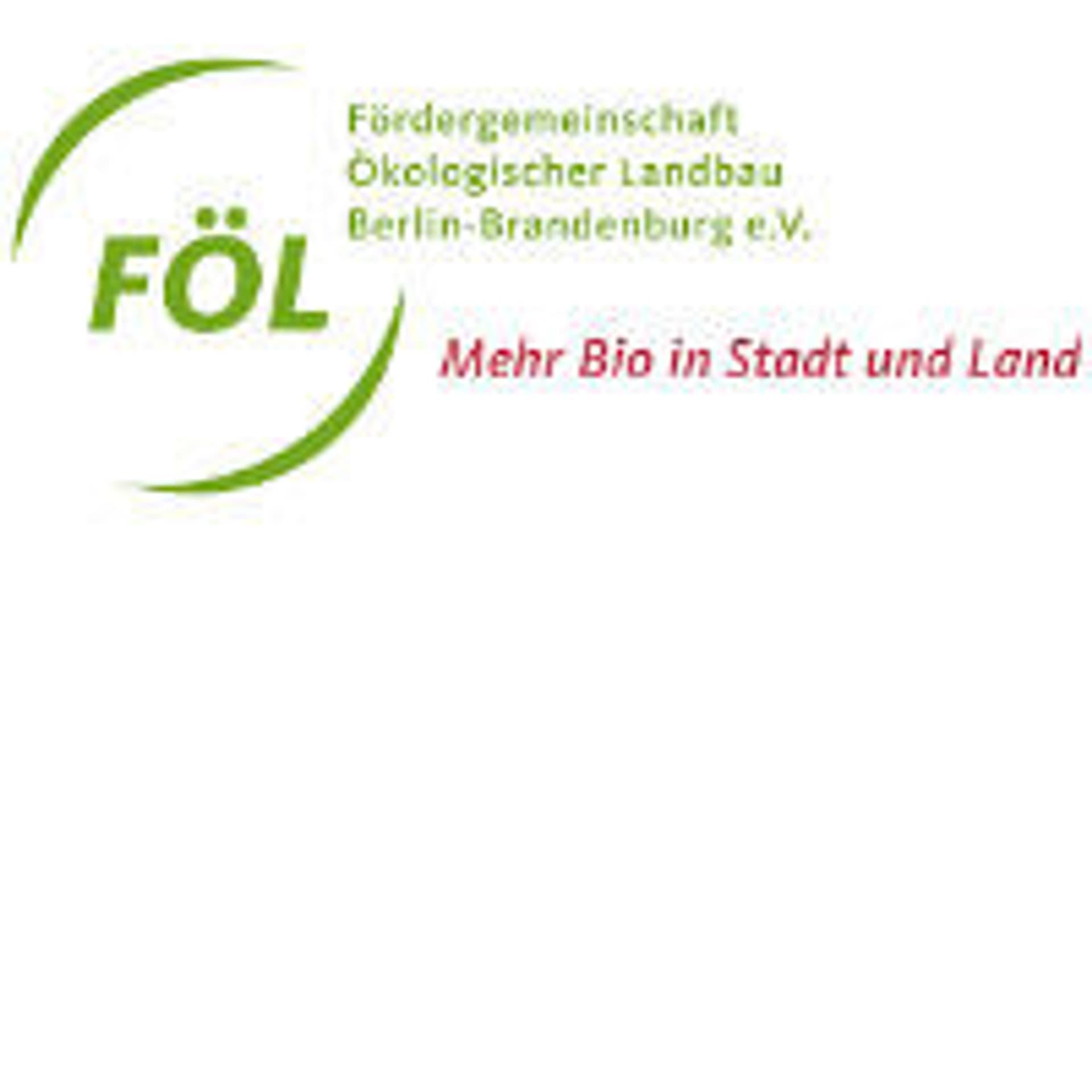 FOEL Berlin Brandenburg