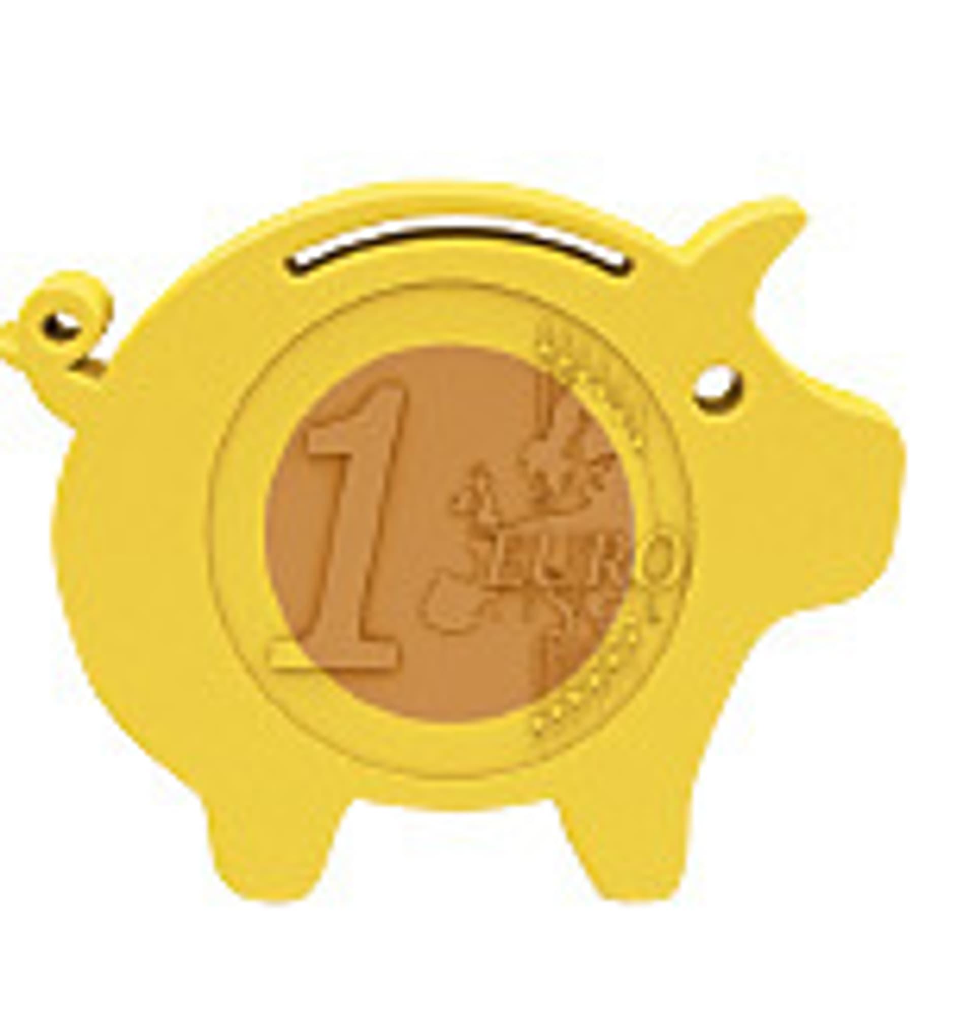Schweinchen (Foto: Colourbox)