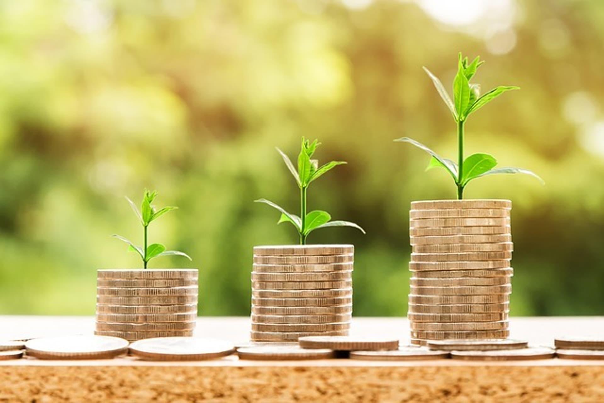 Money 2696219 640 nattanan23 Pixabay