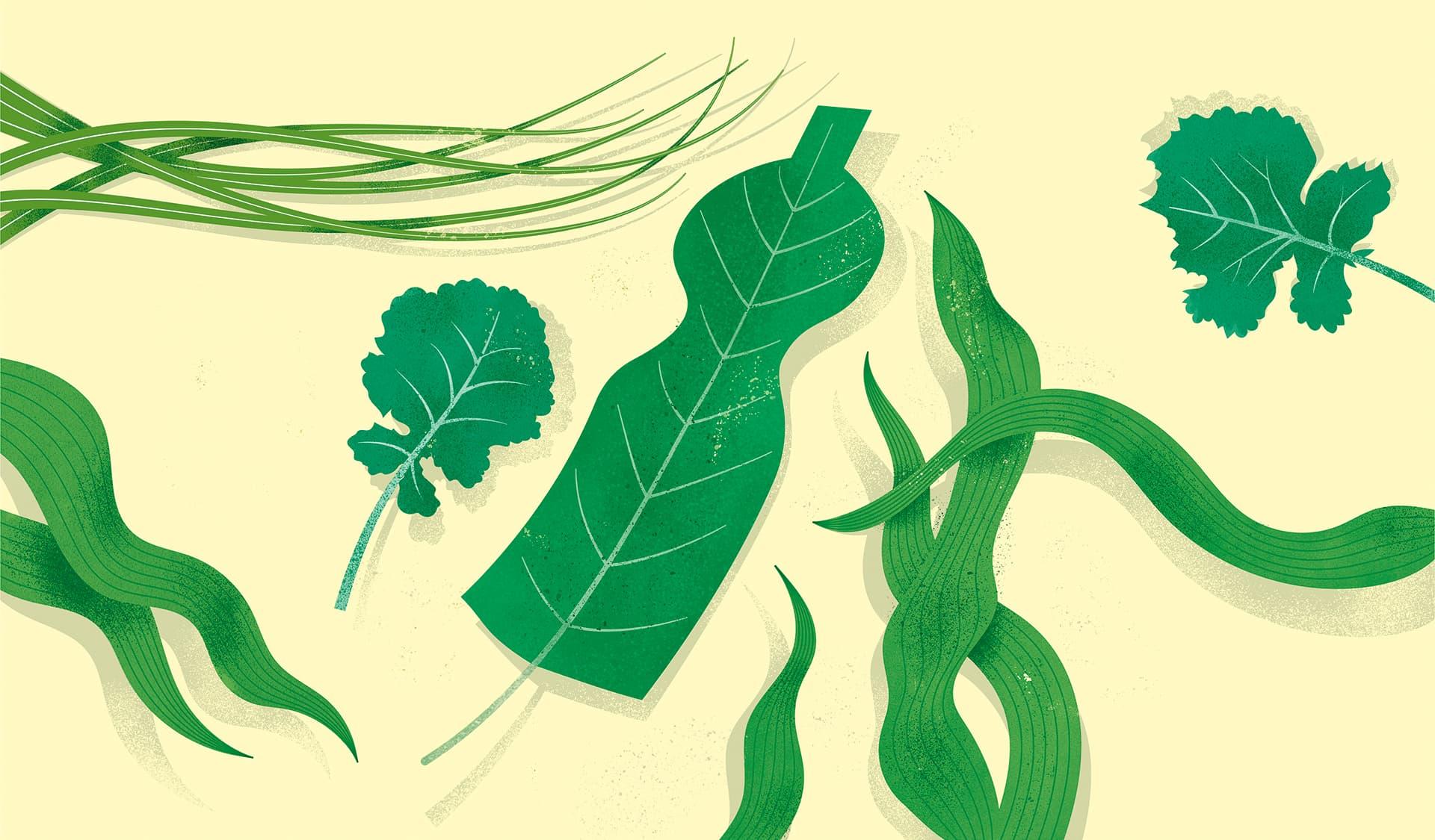 Illustration von Blättern, die wie Plastikflaschen aussehen.