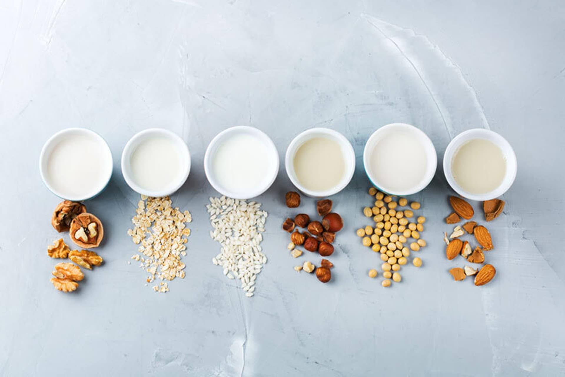 Sechs Schalen mit verschiedenen hellen Flüssigkeiten, davor liegen Walnüsse, Haferflocken, Reiskörner, Haselnüsse, Sojabohnen und Mandeln