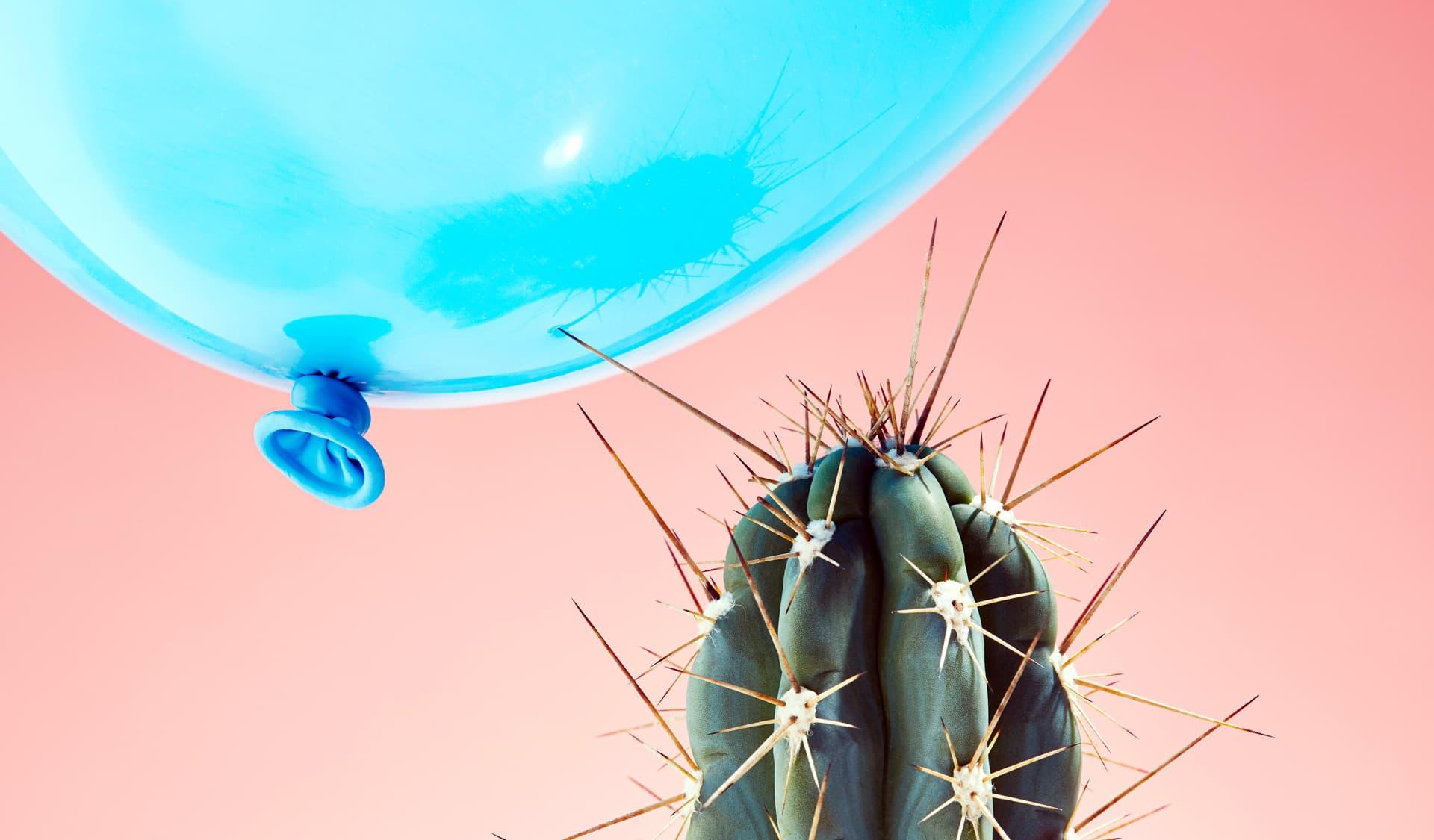 Kaktus berührt einen Luftballon