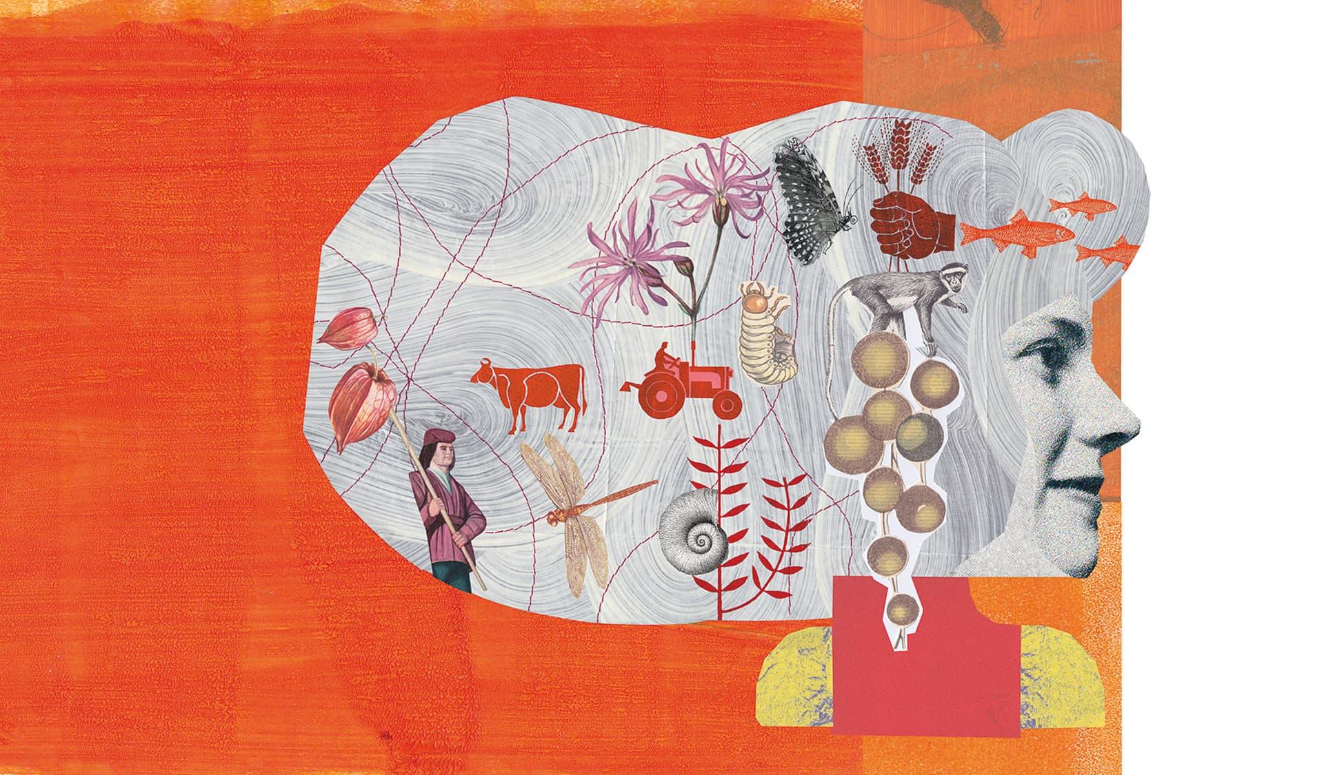 Illustrierter Kopf von der Seite, darin Artenvielfalt in Form von verschiedenen Tieren und ein Trecker.