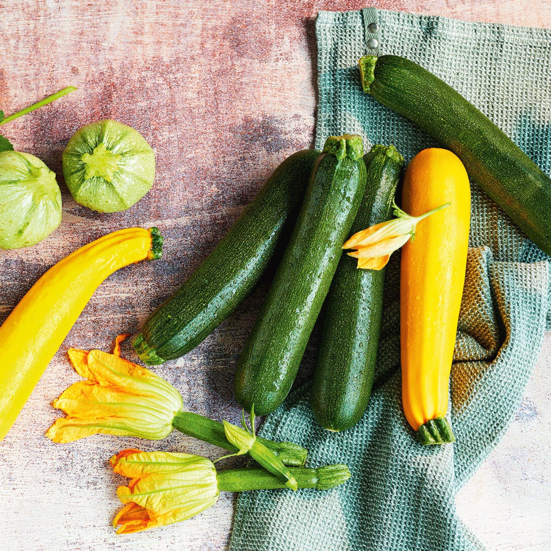 Gelbe, grüne und runde Zucchini und Zucchiniblüten. Zucchini-Rezepte.