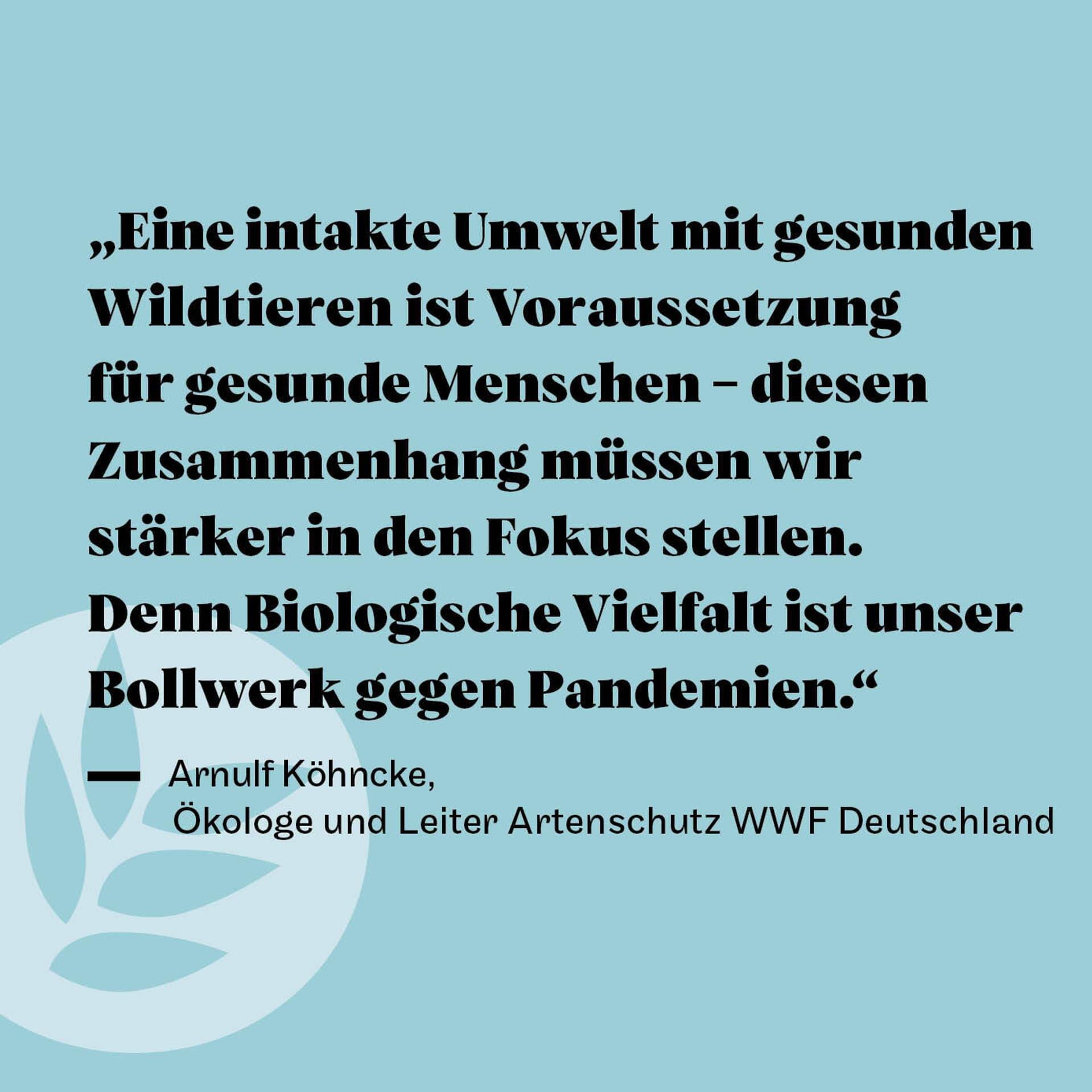 Arnulf Köhncke Zitat