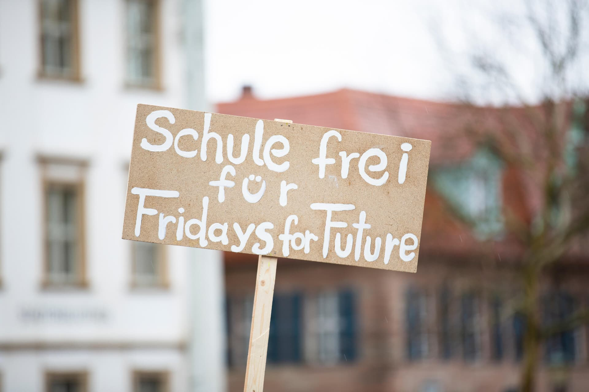 Plakat Fridays for future