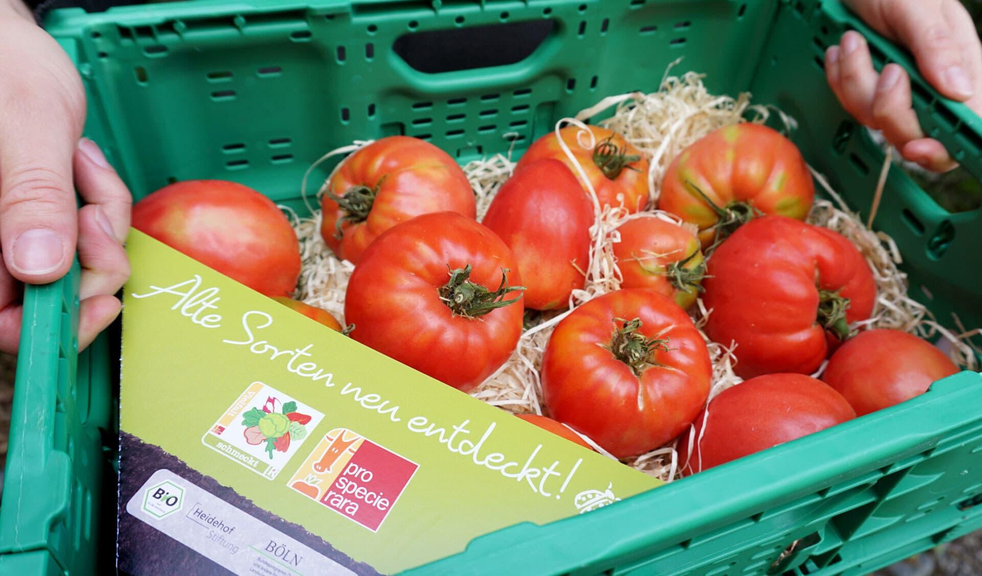 Kiste mit Ochsenherzen-Tomaten