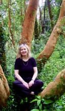 Eliane Zimmermann sitzt in einem Baum.