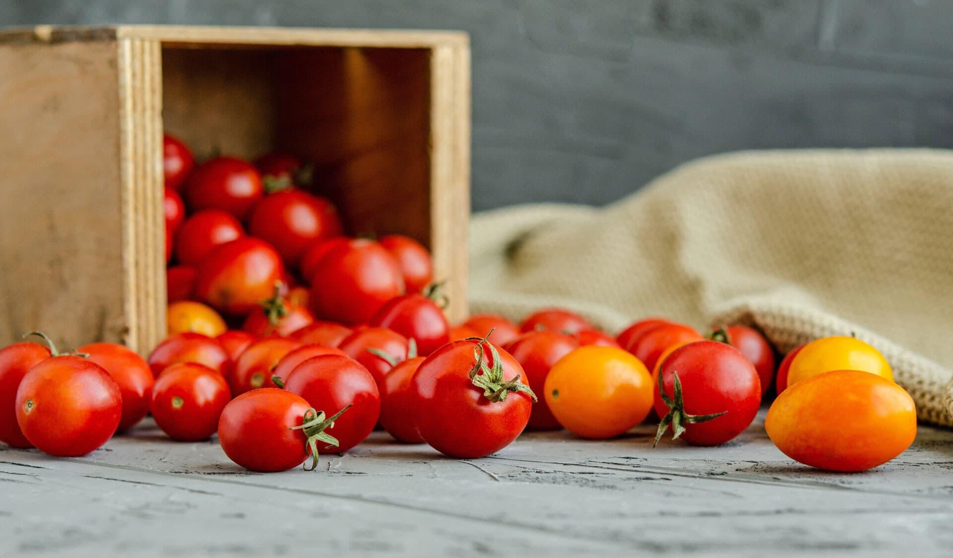 Kleine Tomaten