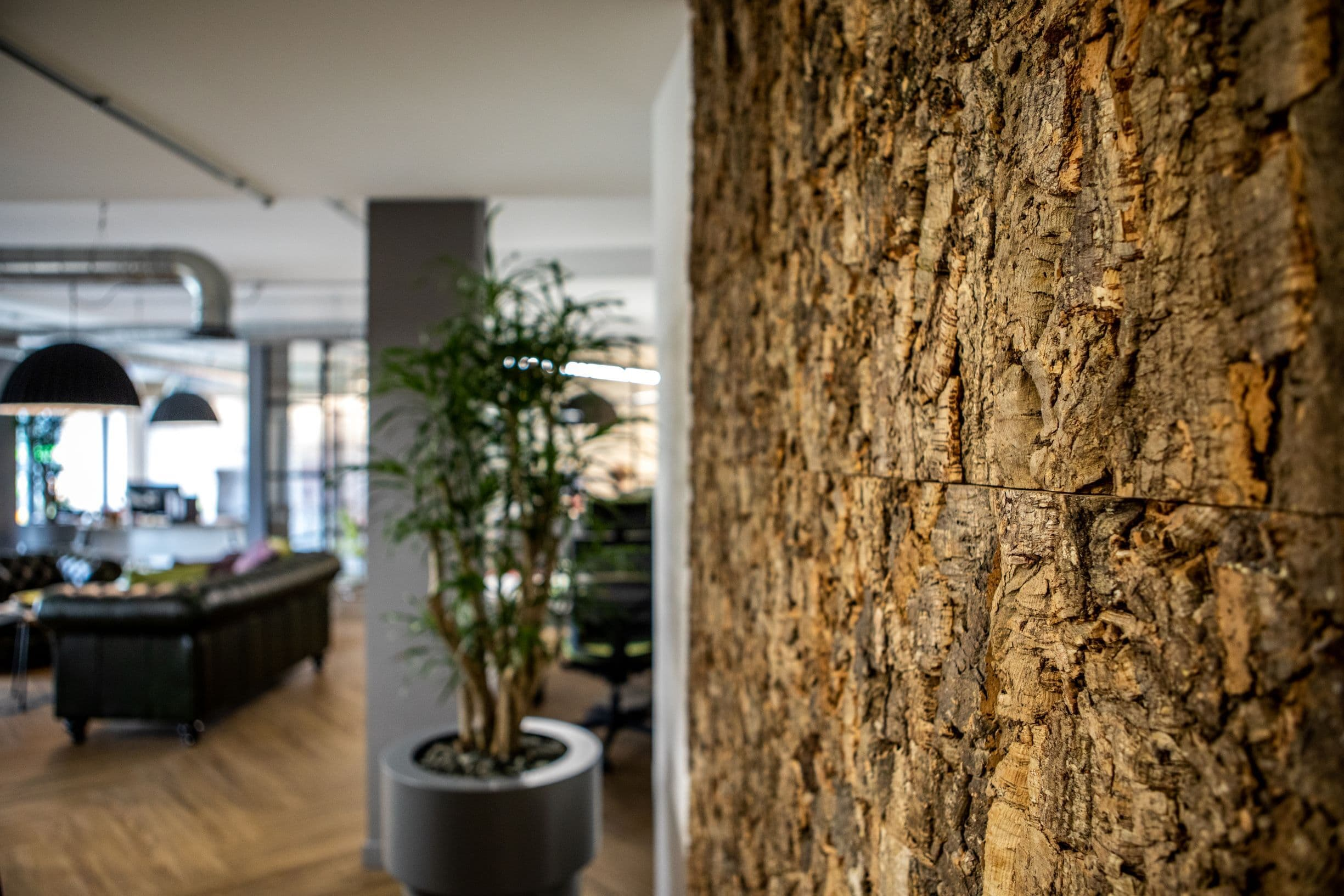 Bark wall and plants in office