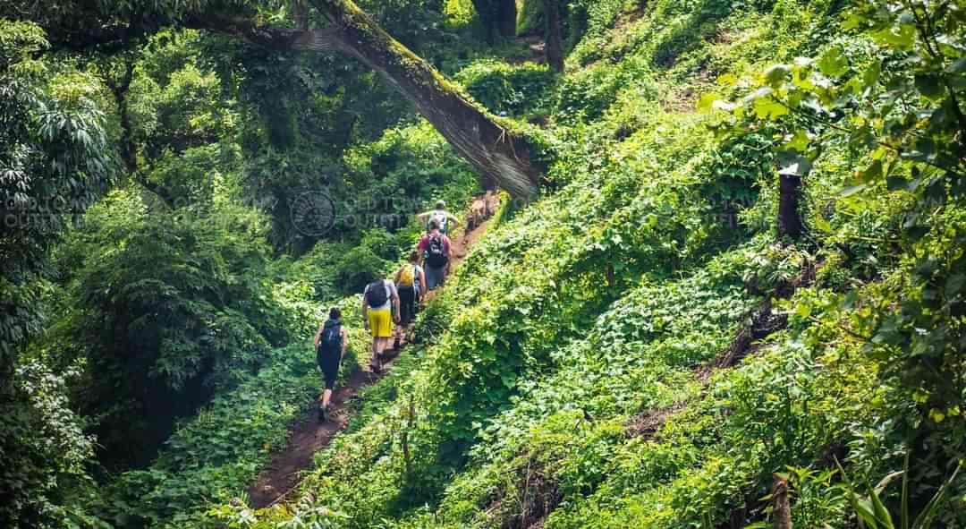 Antigua Hiking Family feature