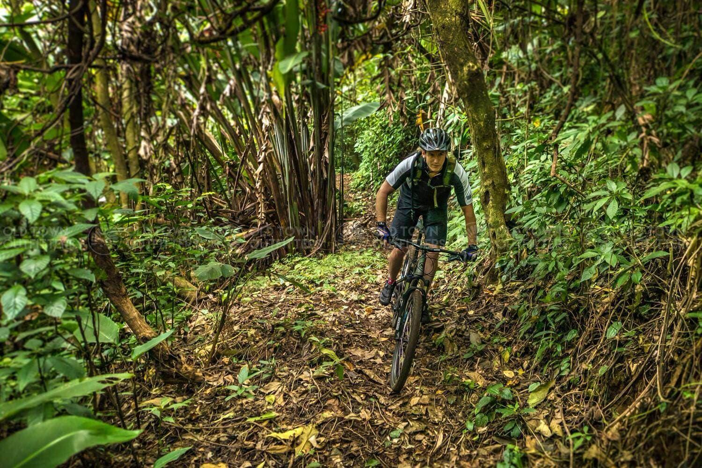 El Zur Trail Jungle