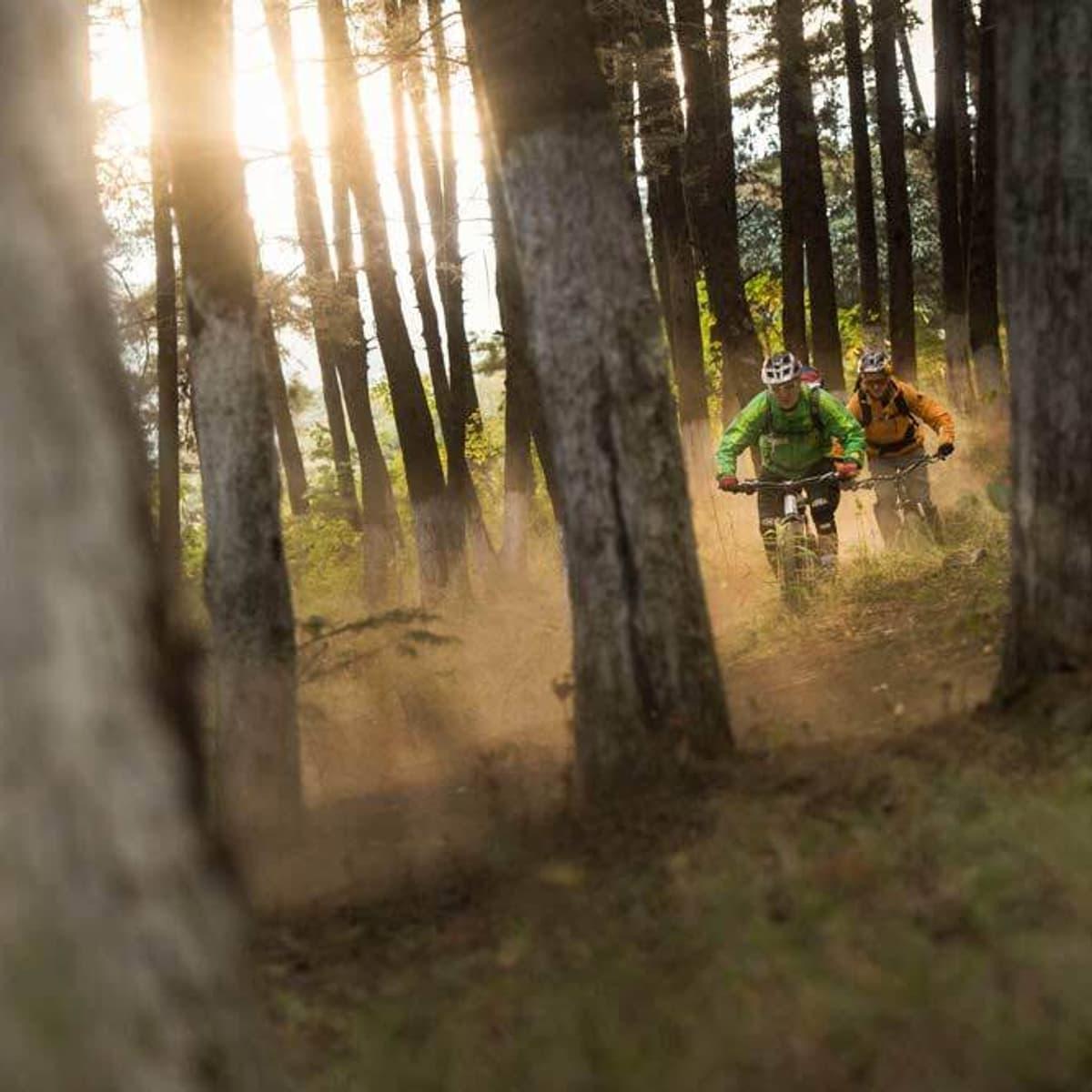 Golden Arches Hans Rey forest mountain biking on custom Guatemala bike tour