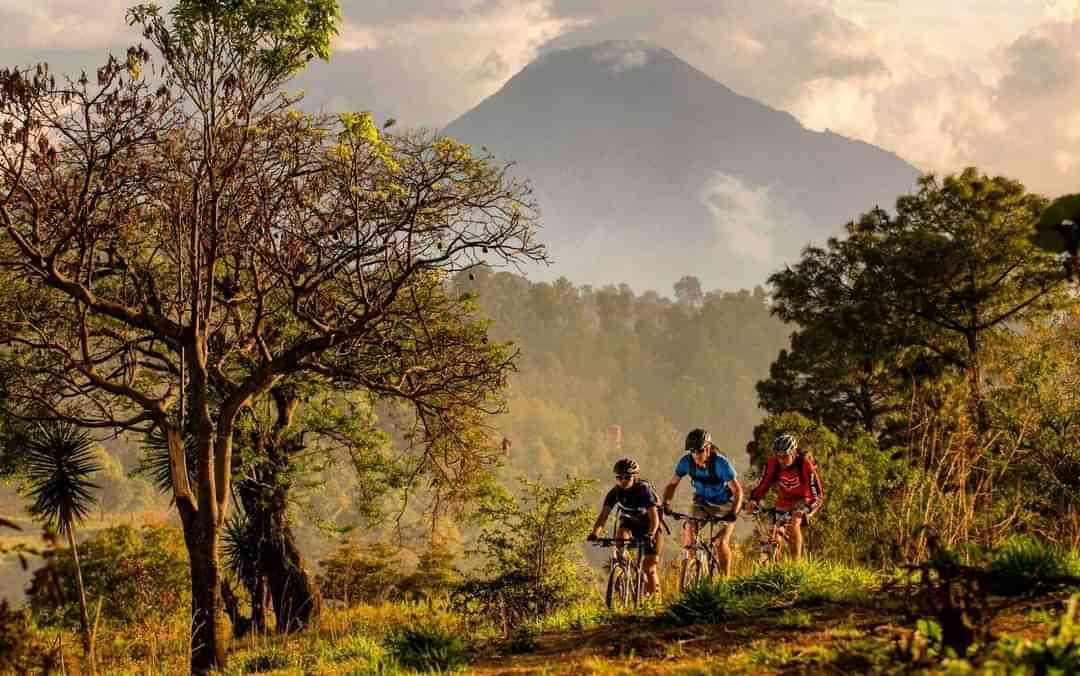 Golden Arches Volcano Trail