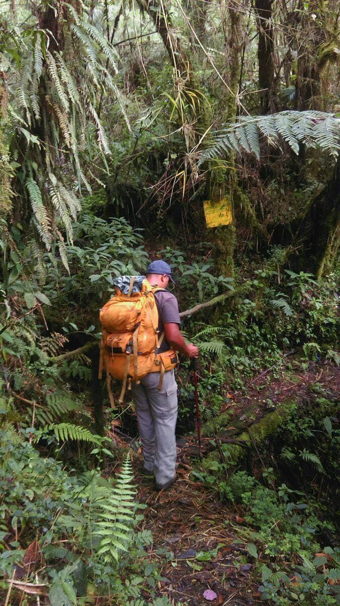 Sierra Las Minas Backpacker