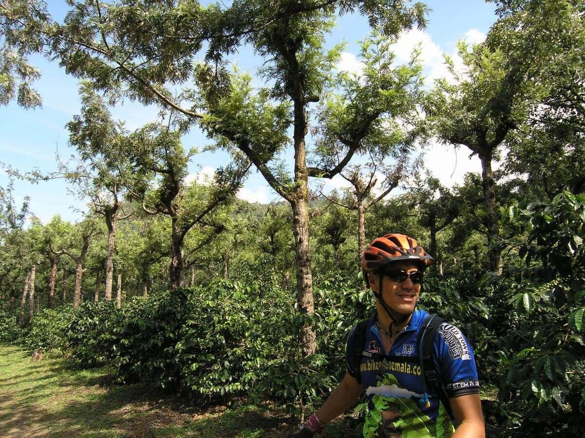 Sip n Cycle Coffee Trail