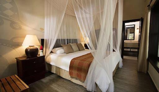 Tikal Hotel Jungle Lodge Room