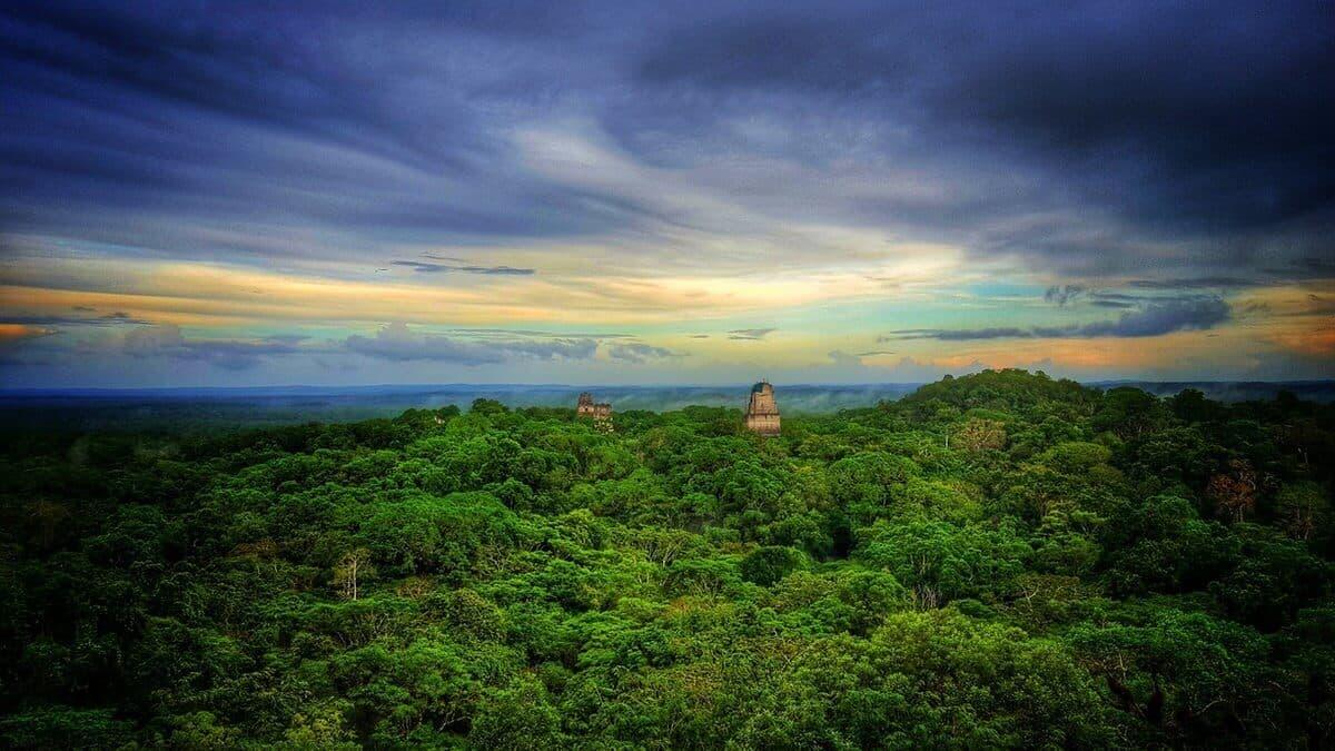 Tikal Jungle Sunset