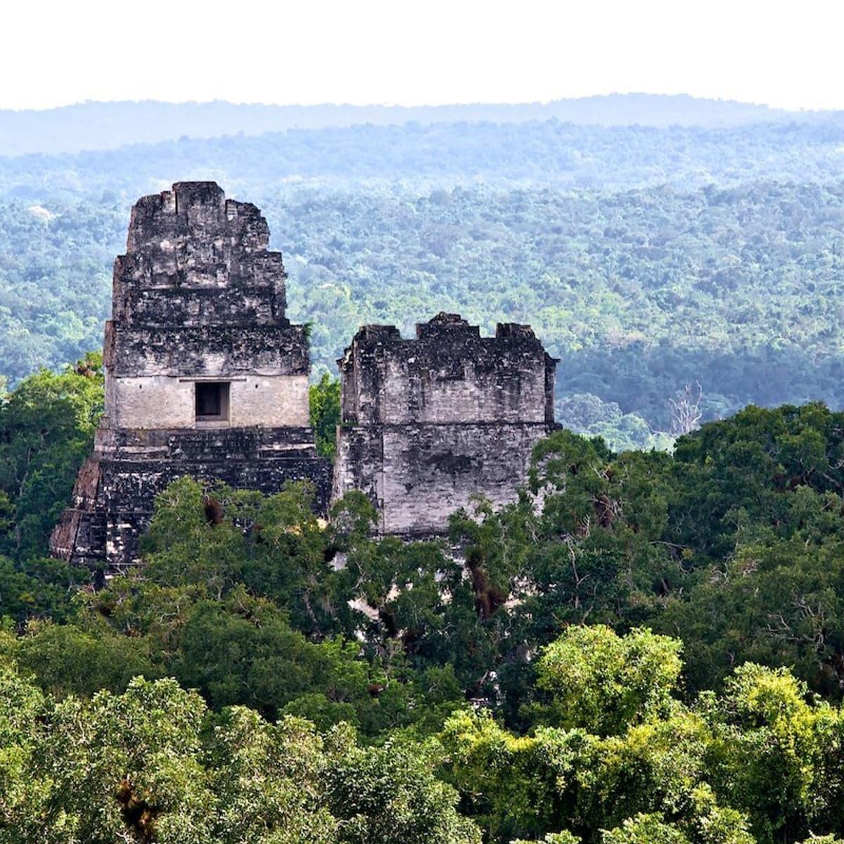 Tikal Mayan Ruins Jungle view from custom Guatemala tour