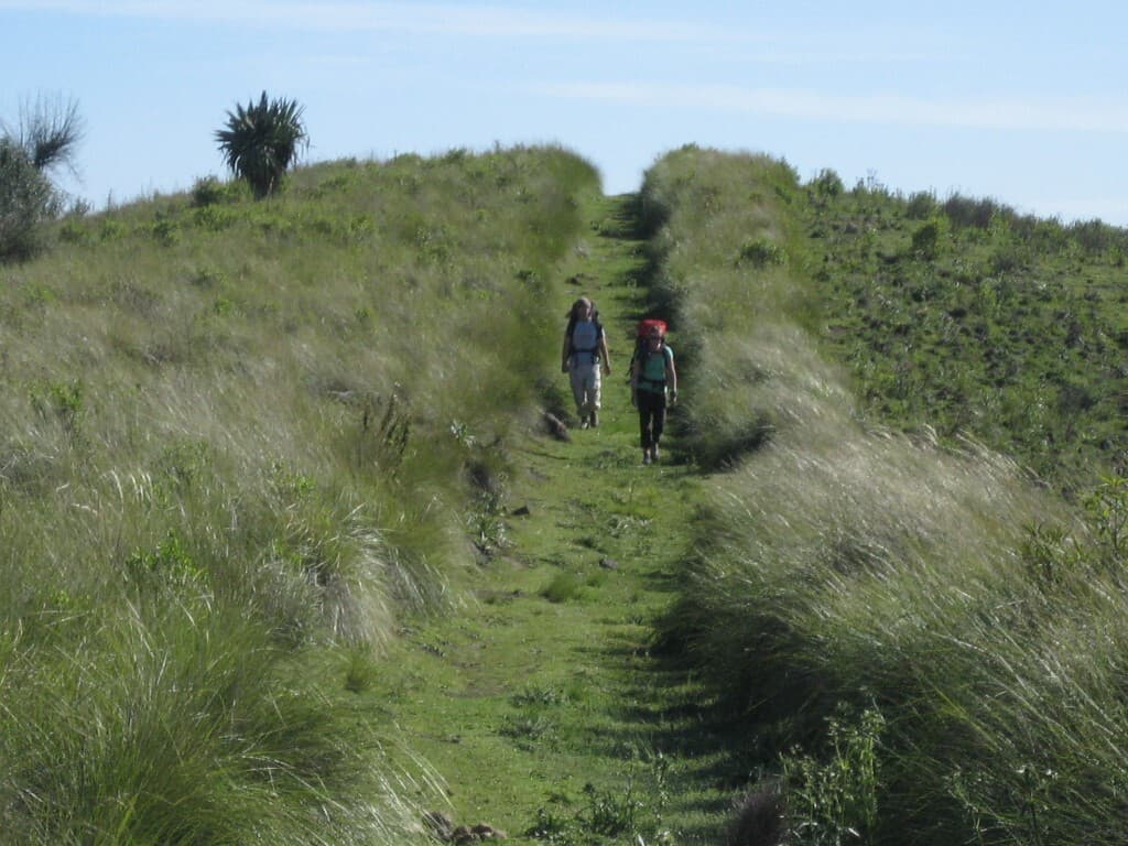 WMHT Grassy Trail