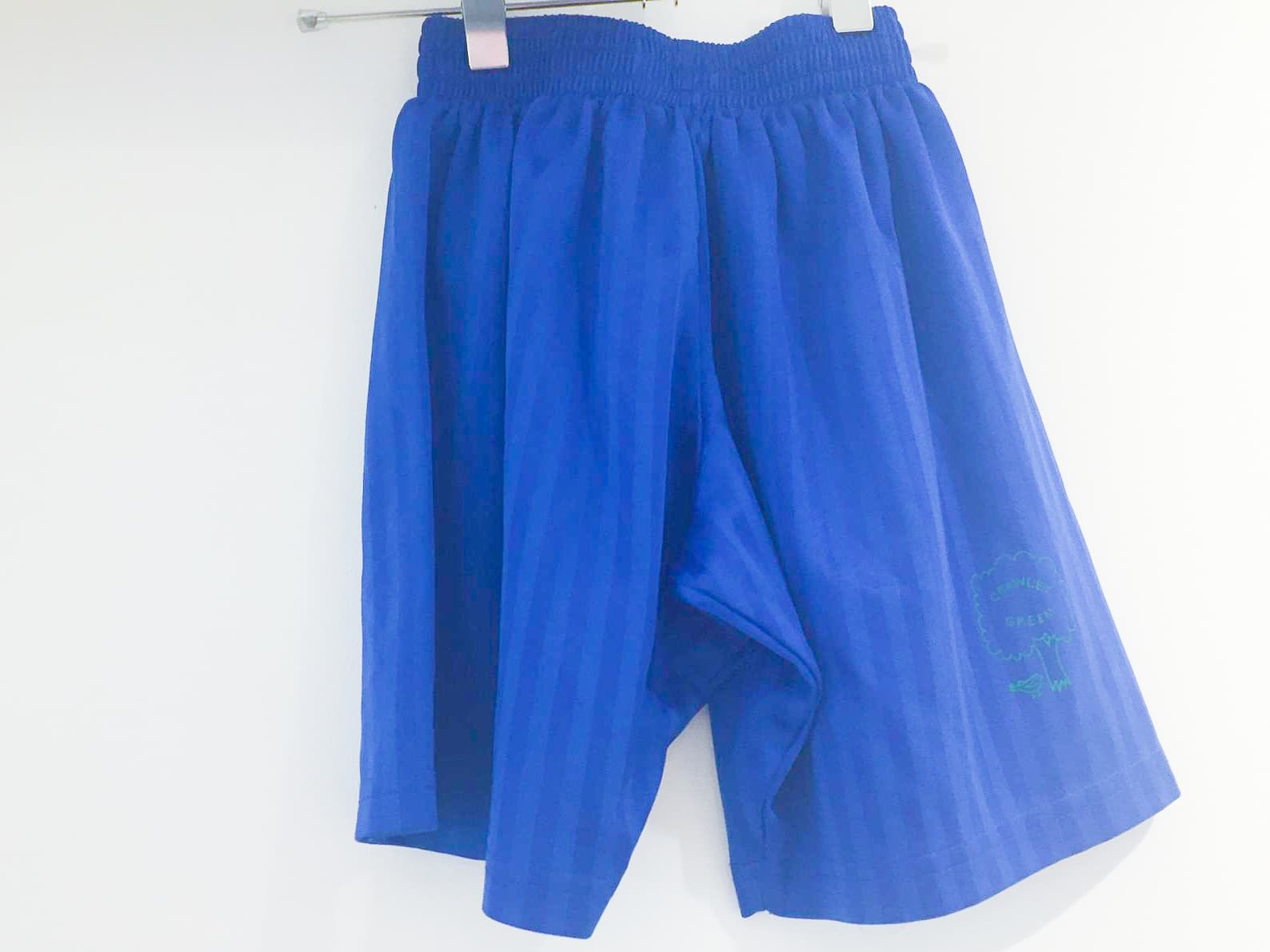PE Shorts - Shadow Stripe - Royal Blue
